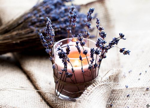 Lavenders and a Candle*