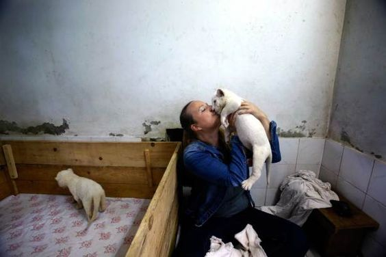 MOST UPLIFTING PHOTOS 2014 | © Provided by Time Article | Zookeeper Nadezda Radovic kisses a three week old white lion cub at Belgrade Zoo, Serbia, Oct. 17, 2014. The two white lions cubs are an extremely rare subspecies of the African lion born at the Zoo.