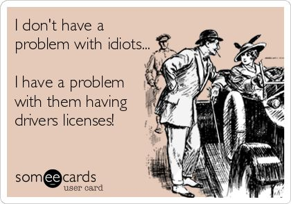 I don't have a problem with idiots... I have a problem with them having drivers licenses!:
