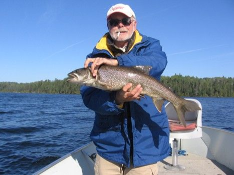 the 5 best lake trout lures! lake trout fishing near quetico park, Fly Fishing Bait