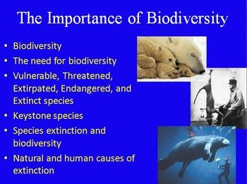 The Importance of Biodiversity - Ecology PowerPoint Lesson ...