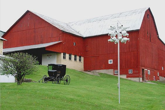 Holmes County, OH~I have been to Holmes county several times in the town of Charm where many Amish live. It is a delight for the senses...