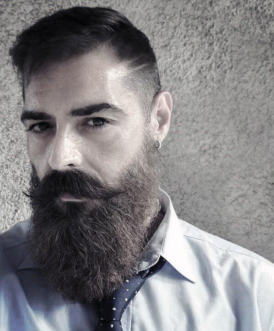 Home Blend Of Bites Beard Styles Receding Hair Styles Hipster Beard