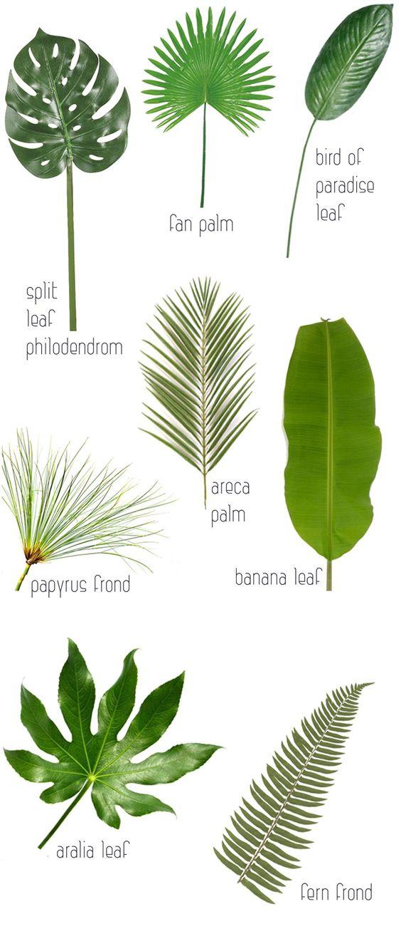 8 Leaves To Love + Tropical Leaf Decor Ideas