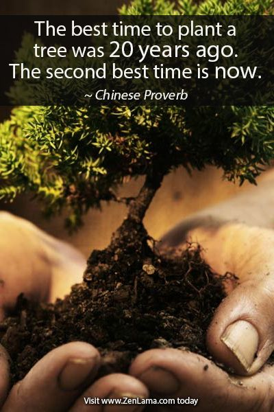 How You Can Create Multiple Streams Of Income. The best time to plant a tree was 20 years ago, the next best time is right NOW. So goes an old Chinese Proverb. In other words make sure you dig your well, well before you need the water. http://bit.ly/14x0iNC