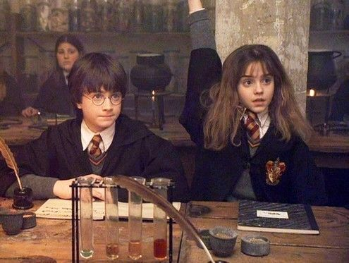 Harry potter and the class distinctions