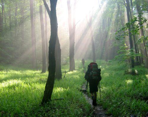 Hiking the Appalachian Trail.