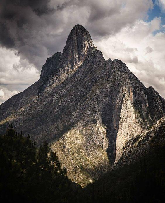 Sierra de Arteaga, Coahuila, México
