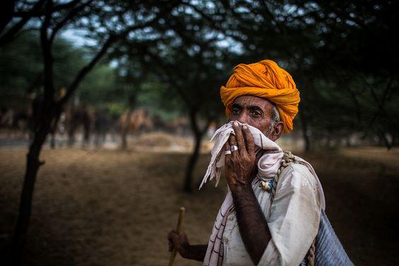 pushkar camel fair on Behance
