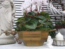 vintage Jardiniere Schale french shabby chic
