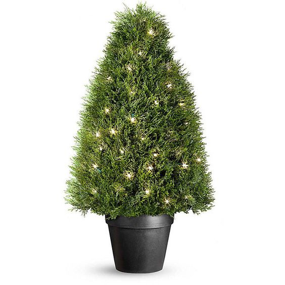 Pond Cypress Pre Lit Artificial Topiary With 70 Clear Mini Lights 835 MYR L
