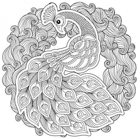 Zentangle Tarzinda Peacock Yetiskin Antistress Boyama Sayfasi Boyama Sayfalari Boyama Kitaplari Cizimler