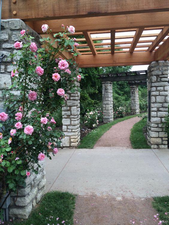 Roses Garden Parks And Roses On Pinterest