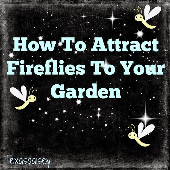 "(link) Attract Fireflies (Lightening Bugs) to Your Garden ~ which are becoming more & more scarce.   READ her page for listing of 7 needs (things we can do to help) these little critters. HINT: above all else, NO PESTICIDES (or chemicals) ~ harmful to ALL living critters, even the good buggies. Fireflies may not be a so-called ""beneficial"" insect, but neither are they a pest, to gardens, but they sure are beautiful at night! ~~ for more great PINs w/good links visit me @djohnisee ~ have fun!"