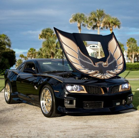 Pontiac : Trans Am BANDIT HURST T/A CAR #1 in Pontiac | eBay Motors