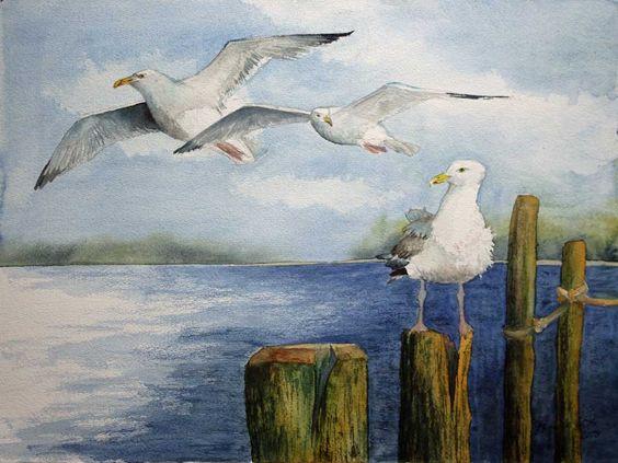 Auf Der Suche Nach Den Besten Platzen C Ein Mowen Aquarell Von Frank Koebsch Fisch Kunst Malerei Aquarell