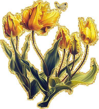 Анимация желтых тюльпанов