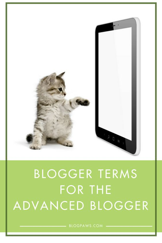 Terminology for advanced bloggers