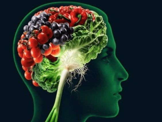 10 Super Alimentos que Melhoram a Memória de Verdade