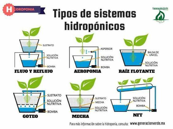 tipo de sistemas hidroponicos
