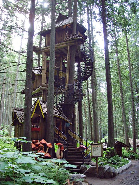 Terrific Tree Houses To Live In Best Design Overview Home Design And Home Largest Home Design Picture Inspirations Pitcheantrous