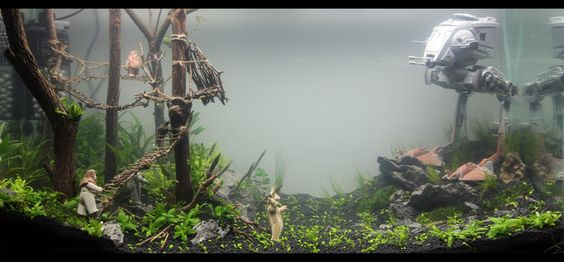 Exotic aquatic 2foot star wars aquascape newcastle for Star wars fish tank decor