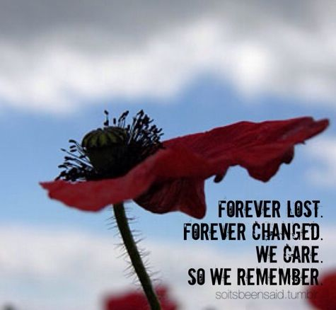 remembrance day uk poppy