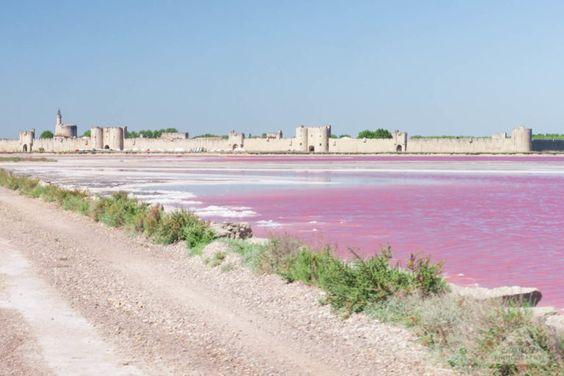 Salin d Aigues Mortes France Camargue Travel blog