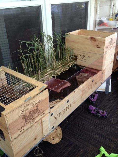 1000 ideas about tortoise enclosure on pinterest tortoise table - Gallery For Gt How To Build Tortoise House