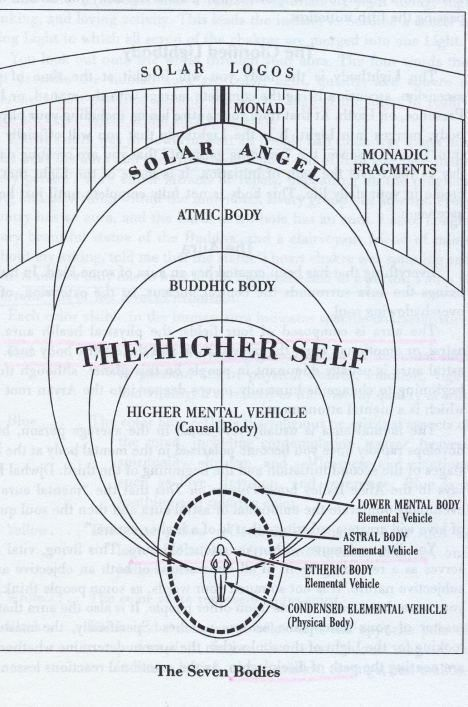 Now there are beings whose lowest member is the etheric body; they too are sevenfold, having an eighth member, higher than spirit-man. We begin to enumerate thus: etheric body, astral body, and so forth, finishing with a member above our spirit-man (Atma). There are other beings whose lowest member is the astral body; above spirit-man they have an eighth and yet a ninth member. Again there are beings whose lowest member is the 'I,' the ego, and who therefore have not a physical nor an etheri...