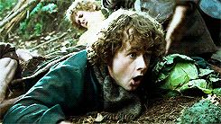 Favorite Scenes from Lord of the Rings: the time Pippin found the mushrooms