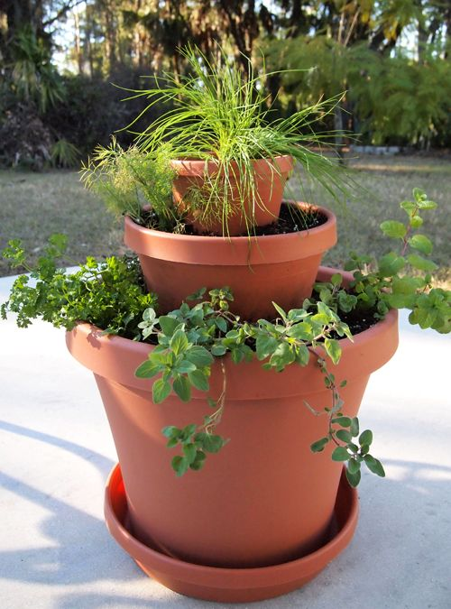 How-To Tiny Herb Tower. Maybe make this weekend?