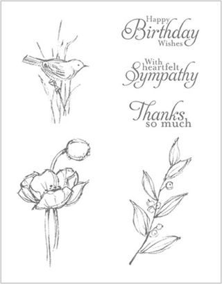 SIMPLY SKETCHED HOSTESS STAMP SET ... CLEAR  #129672 ... MAKES 3 DIFFERENT CARDS SO VERSATILE: