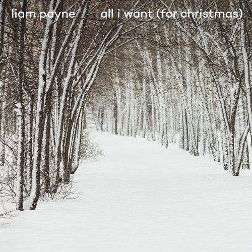 New Christmas Song All I Want For Christmas Download By Liam Payne Latest Christmas All I Want For Christmas Song Download 320kbps For Fr Liam Payne New Christmas Songs All I