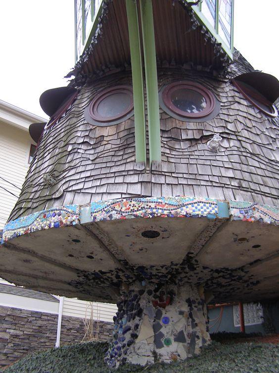 Mushroom in Ohio