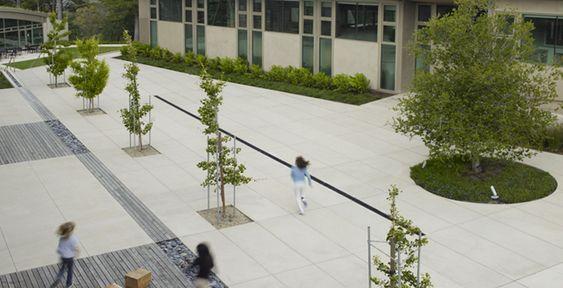 Nueva School Andrea Cochran Landscape Architecture, San Francisco USA