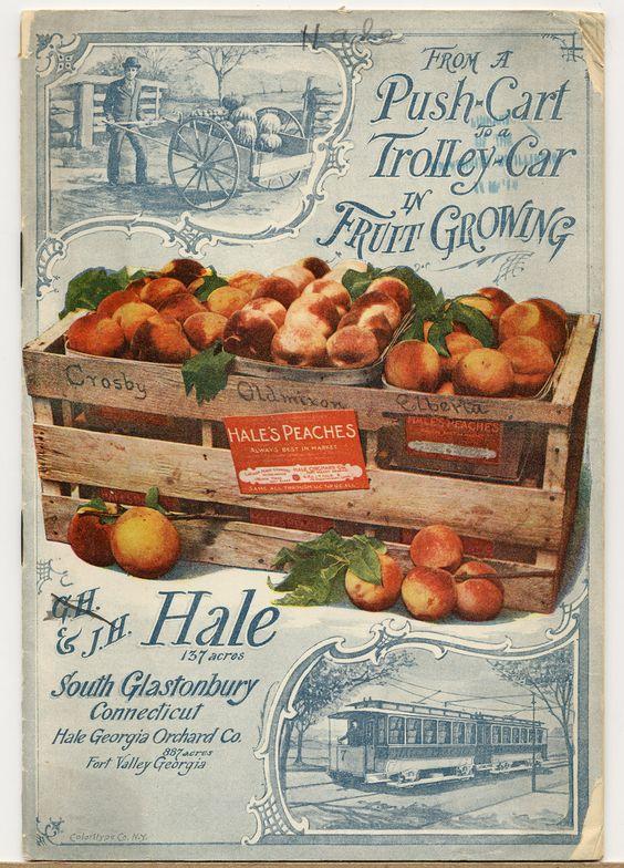 J.H.Hale Fruit Catalogs, 1897