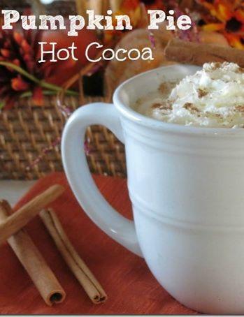 Fall Recipes: Pumpkin Hot Cocoa   Simple, Pumpkin pies and Pumpkins