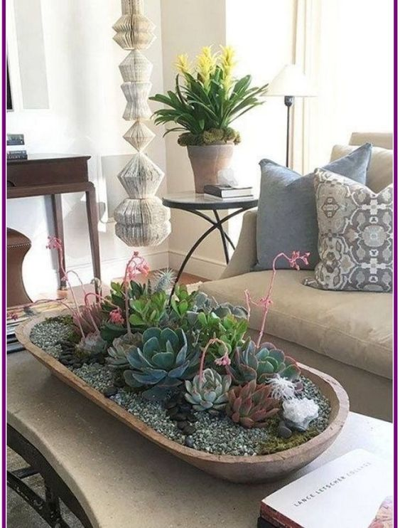 wide oval succulent planter on a coffee table #gardenIdeas #garden #gardening #plants #homeDecor #indoor