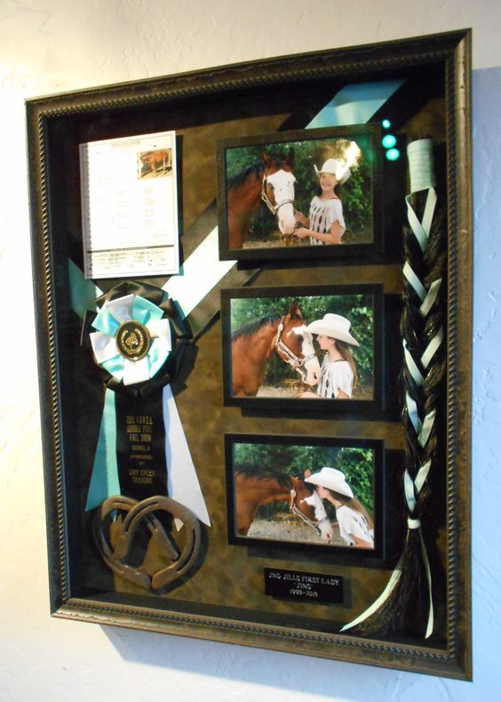 Memorial Shadowbox for a beloved horse