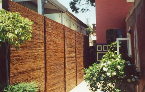 bamboo fencing tall and private