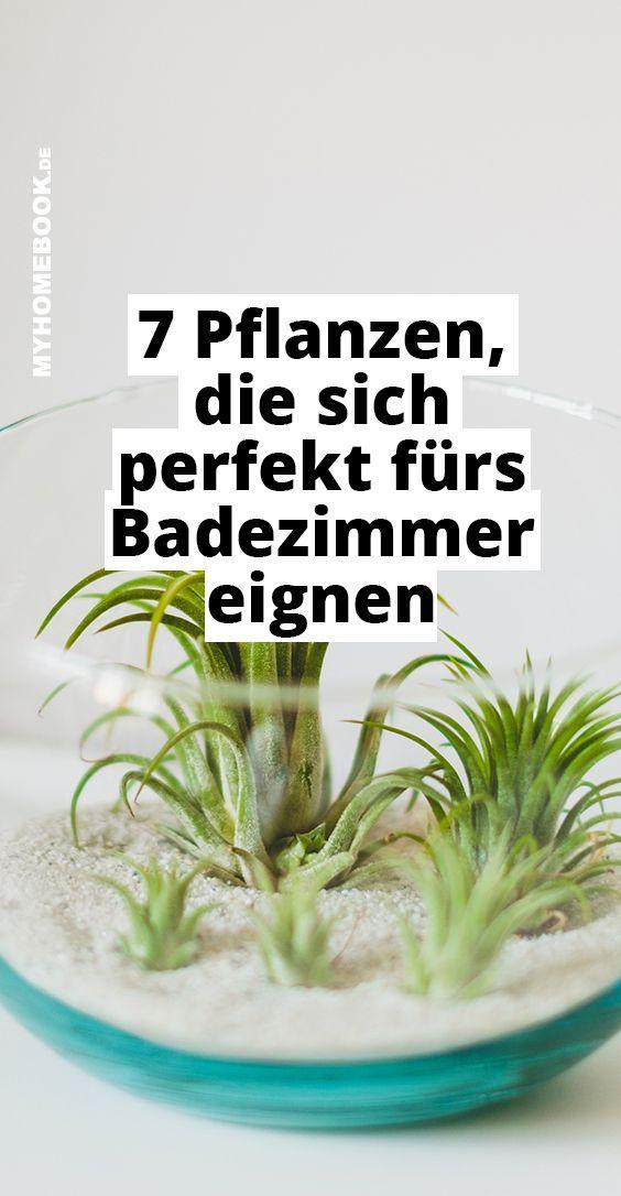 Diese Pflanzen Sind Perfekt Fur Dein Badezimmer Badezimmer Dein Dekobadezimmer Diese Fur Perfekt Pflanz In 2020 Pflanzen Pflanzen Furs Bad Badezimmerpflanzen