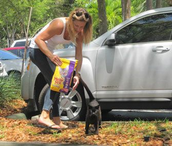 The people who take care of feral cat colonies through feeding and trap, neuter, return work come in all shapes and sizes, but every last one of them has a great, big heart.