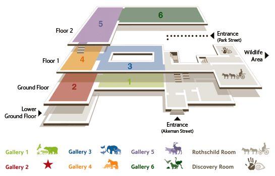Museum Floor Plan Design Google Search Corporate Office Inspiration Pinterest Signage