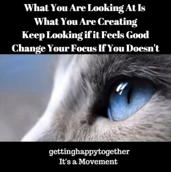 What we focus on expands so we want to be sure we are focusing on what we want.  To learn more about how to focus on what you want go to @gettinghappytogether
