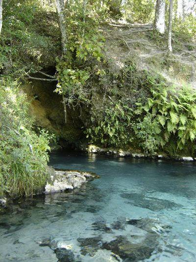 Emerald Spring   Snorkel this hidden Florida Spring   Located on the Econfina Creek , about 1/2 mile south of the Hwy 20 bridge. (25 miles North of Panama City)   This is a true gem hidden away from most people.  About 100 yards south of the entrance to the Gainer Springs group lies the easy to spot Emerald Spring.   Surrounded by a small cove and 20-25 ft. high bluff above it this spring is unique.  The water is a crystal clear blue and is very similar to Shangri-La Springs in Marianna.