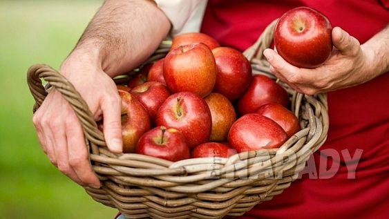 Jak poznat zralé jablko? | Prima nápady