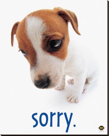 Ways to Say Im Sorry