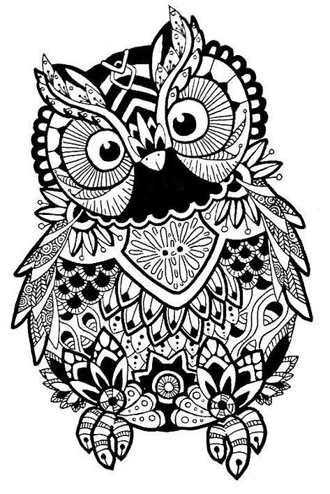 Image Result For Free Svg Zentangle Owl Coloring Pages Coloring