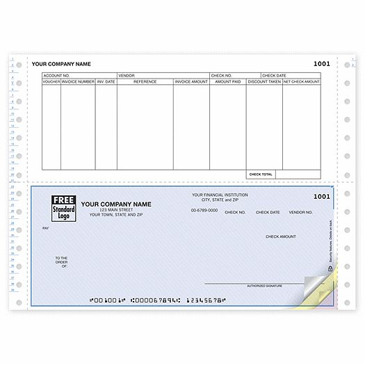Blank Pay Stubs Business Checks, Accounts Payable Checks teri - paycheck stub creator free